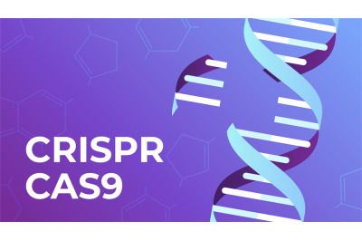 CRISPR CAS9. DNA gene editing tool, genes biotechnology and human geno