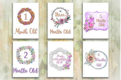 Milestone Signs Baby Months Cards, baby girl,baby boy