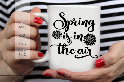 spring is in the air Spring SVG ,Easter Svg, DXF File