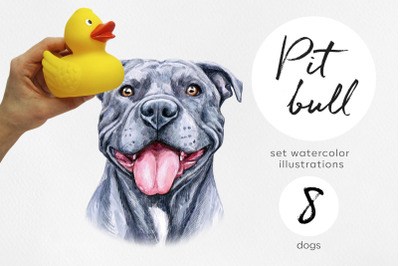 Pitt bull dog. Watercolor dogs illustrations. Cute 8 dogs.