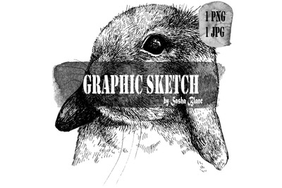 Graphic sketch hare head