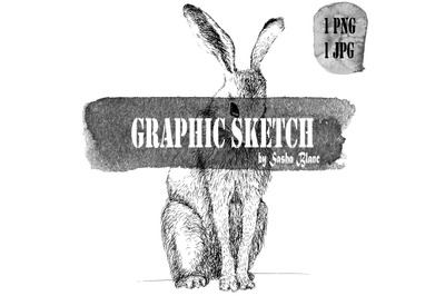 Graphic sketch hare
