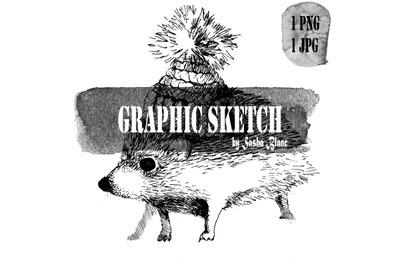 Graphic sketch hedgehog