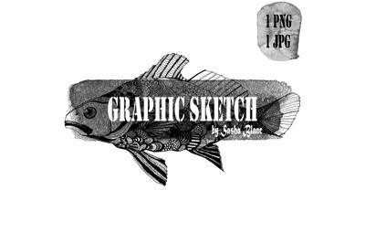 Graphic sketch ornament fish