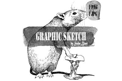 Graphic sketch rat