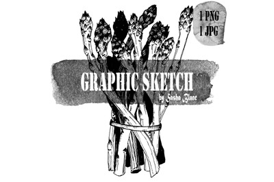 Graphic sketch asparagus