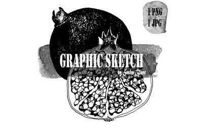 Graphic sketch pomegranate