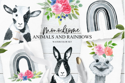 Monochrome Animals and Raibows