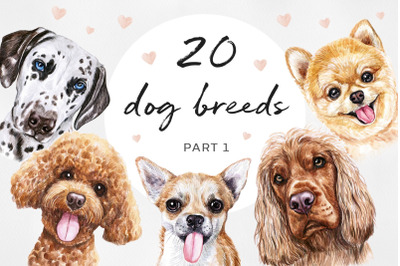 PART 1. Big watercolor illustrations set DOG breeds.