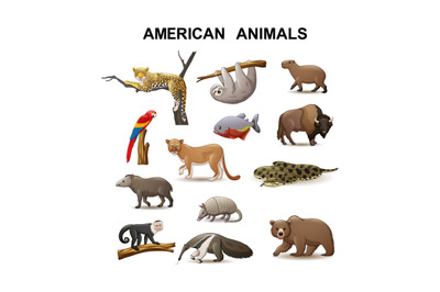 American animal collection set