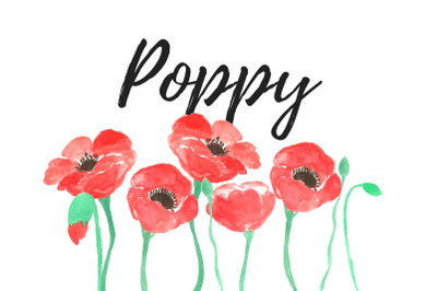Watercolor poppy clip art