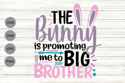 The Bunny Is Promoting Me To Big Brother Svg, Easter Svg, Bunny Svg.