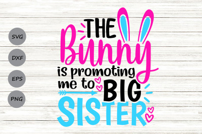 The Bunny Is Promoting Me To Big Sister Svg, Easter Svg, Easter Bunny.