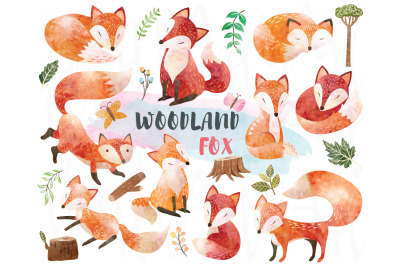 Watercolor Woodland Animal Fox