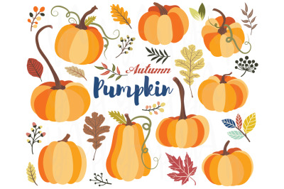 Autumn Pumpkin Collections Set