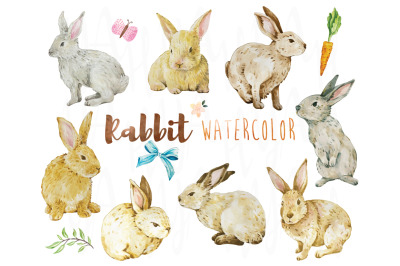Bunny Watercolor Elements