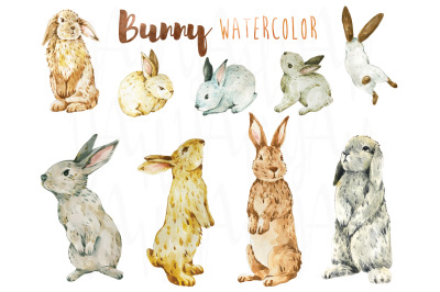 Cute Bunny Watercolor Collections