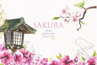 Sakura. Spring watercolor collection