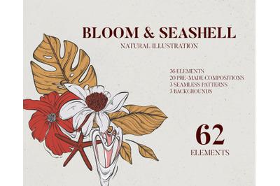 Floral and seashell line art branding kit, e-commerce banner clipart ,