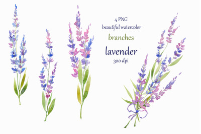 watercolor hand painted Lavender Clipart