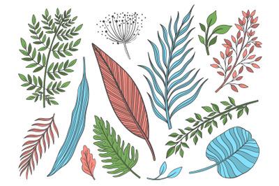 Plant set color