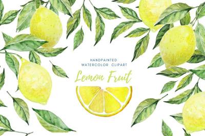 Citrus fruit watercolor set. Lemons and leaves. Hand drawn clipart.