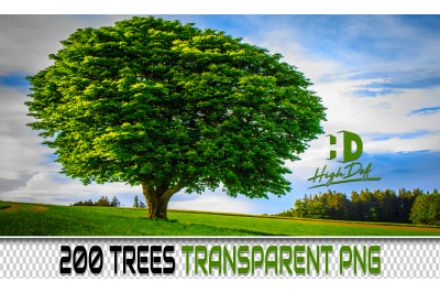 200 TREES TRANSPARENT PNG Photoshop Overlays, Backdrops, Backgrounds