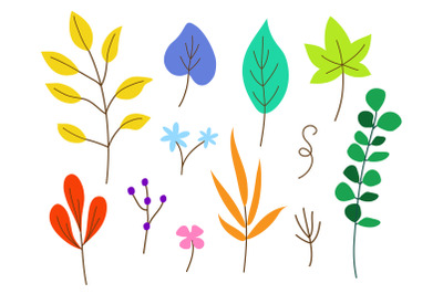 Vector illustration collection of colourful leaves in different shapes