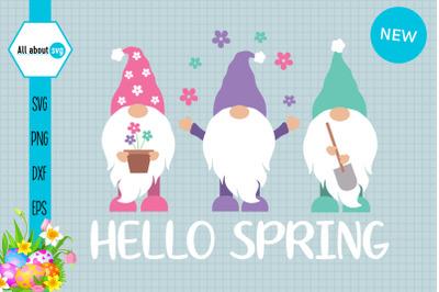 Hello Spring Gnomes Svg