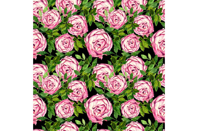 Seamless pattern with roses on black background.