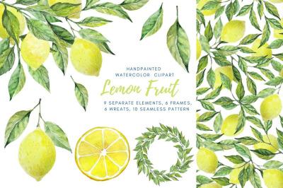 Lemon collection. Set of lemon elements