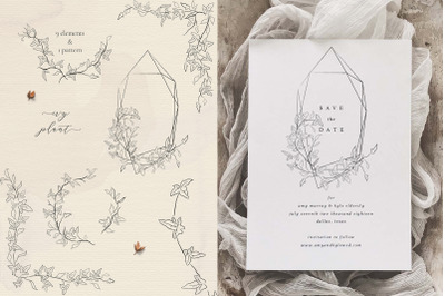 Line drawing delicate Ivy plant floral frames and wreaths illustration