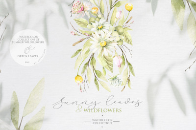 Summer leaves & wildflowers. Watercolor collection