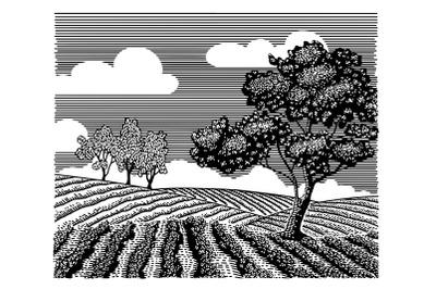 Generic Landscape Doodle