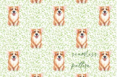 Corgi. Dog and pattern