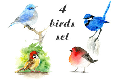 4 birds set: isolated watercolor illustrations of four birds