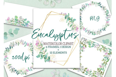 Watercolor frame wreath with eucalyptus leaves clipart