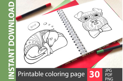 Liked dogs - big coloring book