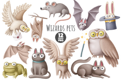 Wizards pets