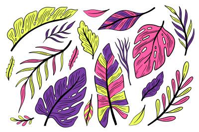 Set plant hand drawn