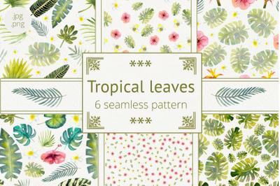 Tropical leaves. Summer mood. Tropical leaves. Watercolor