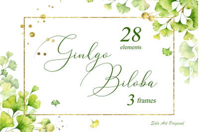 Ginkgo biloba .Watercolor clipart set.
