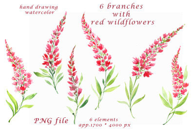 watercolor hand painted red wildflowers Clipart