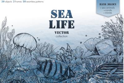 Sea life vector collection