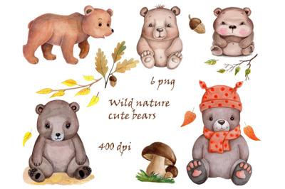 Watercolor  Cartoon Wild Nature Bears.
