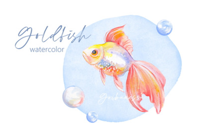 Fish and bubbles. Watercolor
