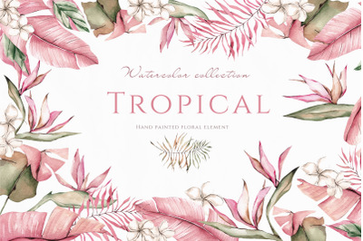 Tropical. Watercolor collection