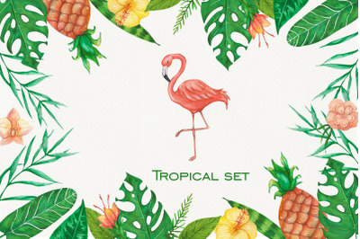 Tropical set