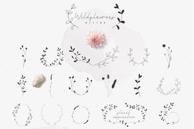 Hand-drawn Botanic elements, Wildflowers Rustic Wreaths, Branches.