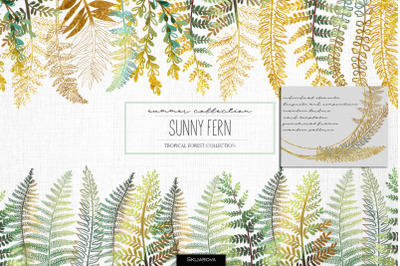 Sunny fern. Tropical forest collection.